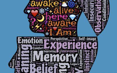 Wie kommt Bewusstsein in die Welt? 177